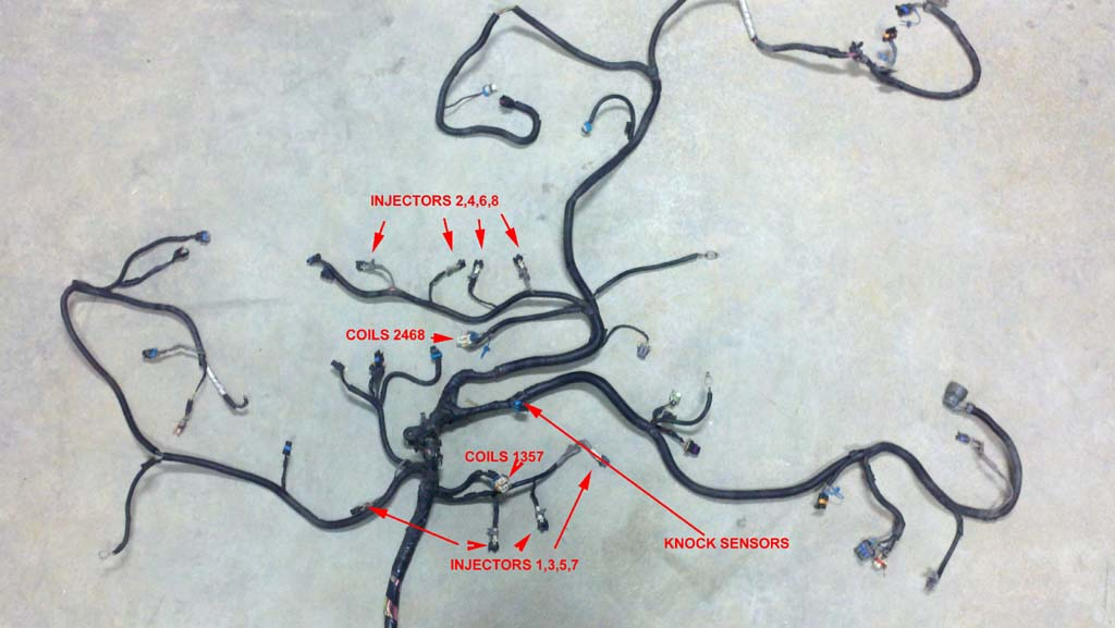 Ls1 Wiring Harness Diagram from lt1swap.com