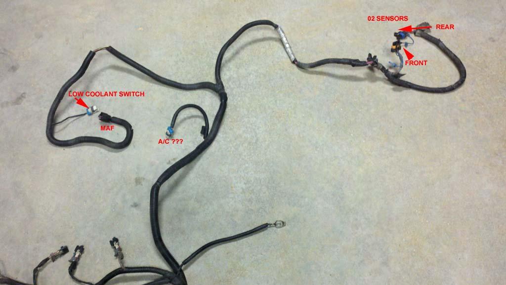 Vortec 4.8/5.3/6.0 Wiring Harness InfoLT1 Swap